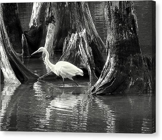 Egret Solitude Canvas Print