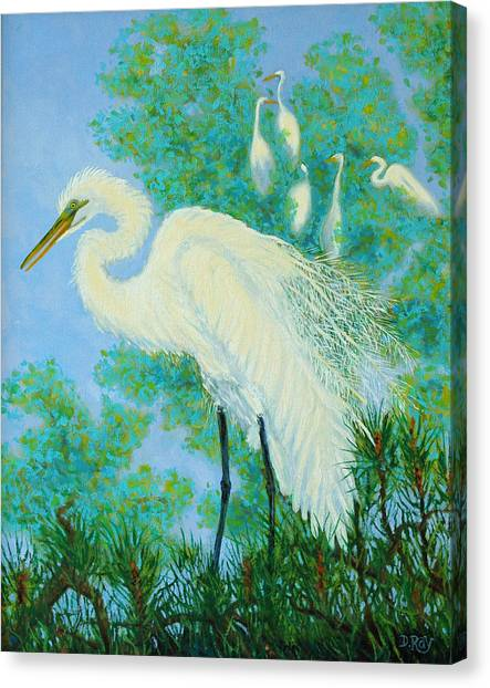 Egrets In Rookery - 20x16 Canvas Print