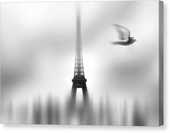 Dove Canvas Print - Eiffel Serene by Sol Marrades