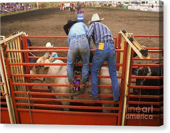 Bull Riding Canvas Print - Rodeo Eight Seconds To Payday by Bob Christopher