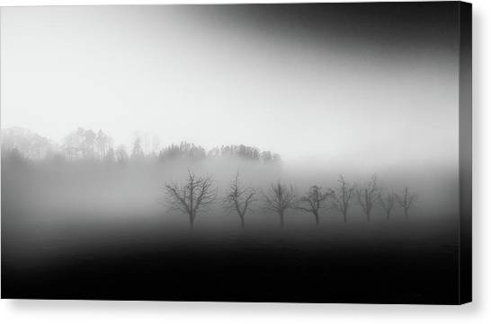 Foggy Canvas Print - Eight Trees In The Mist by Nic Keller