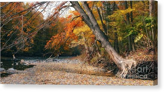 Eighteen Mile Creek Canvas Print
