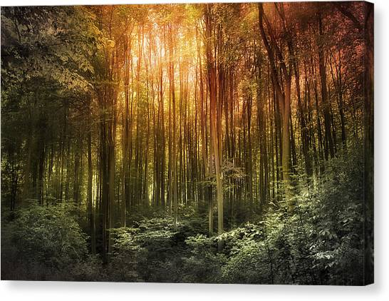 El Paradiso Mio - Awakening Spiritual Landscape Canvas Print