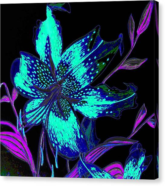 Pen And Ink Drawing Canvas Print - Electric Blue Stargazer by Laura Wilson