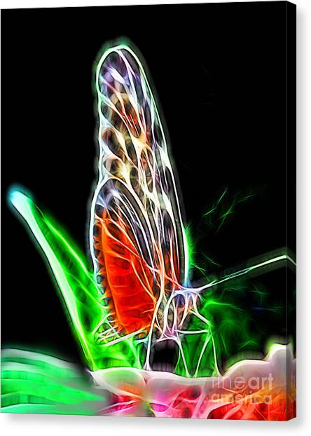 Electric Butterfly Canvas Print