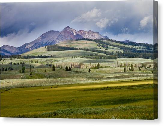 Yellowstone National Park Canvas Print - Electric Peak by Bill Gallagher