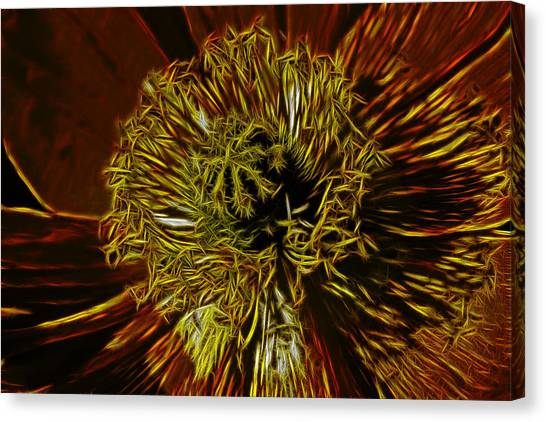 Electric Poppy Canvas Print by Photographic Art by Russel Ray Photos