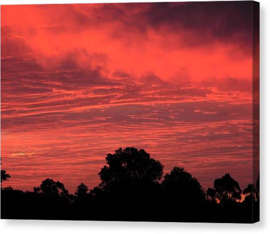Electric Red Canvas Print