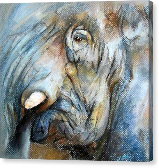 Elephant Eye Canvas Print