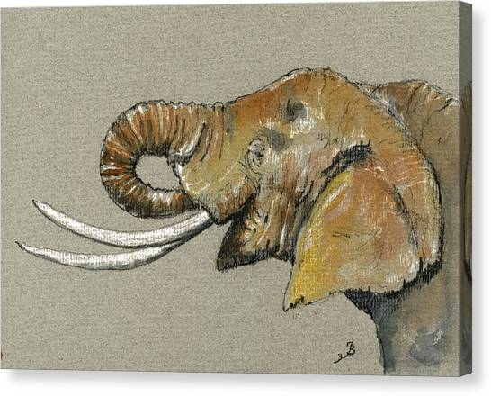 Ivory Canvas Print - Elephant Head  by Juan  Bosco