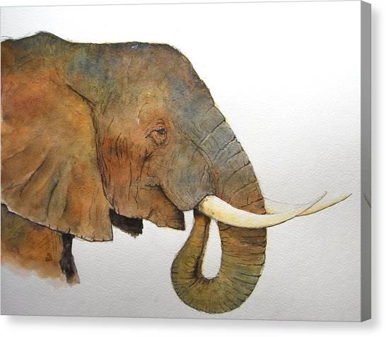 Nature Study Canvas Print - Elephant Head Study by Juan  Bosco