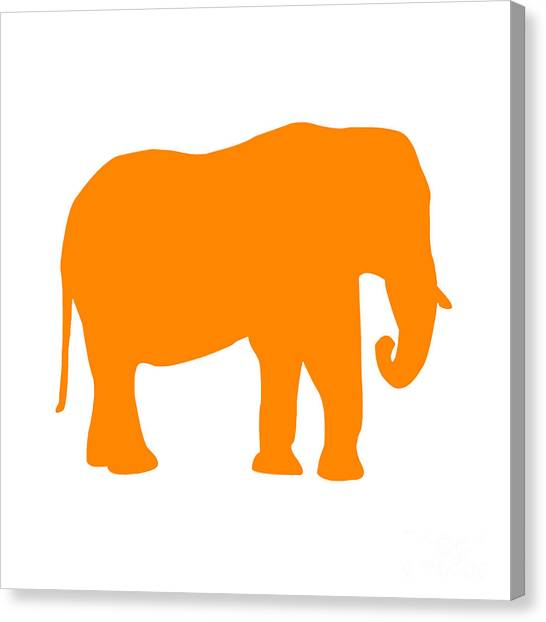 Elephant In Orange And White Canvas Print