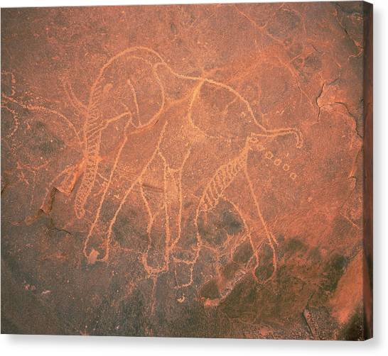 Sahara Desert Canvas Print - Elephant Petroglyph by David Parker/science Photo Library