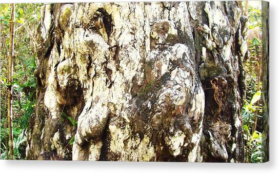 Elephant Tree Canvas Print by Van Ness