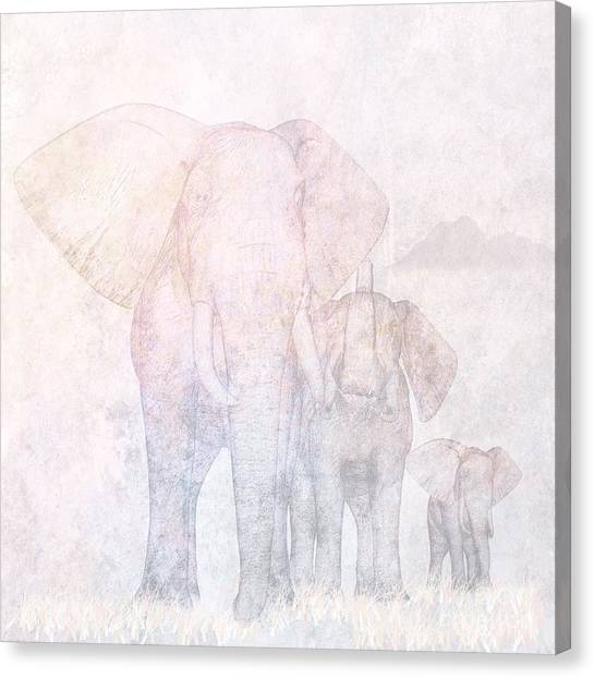 Summer Canvas Print - Elephants by John Edwards