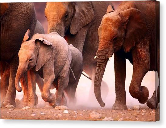 Sandy Desert Canvas Print - Elephants Stampede by Johan Swanepoel