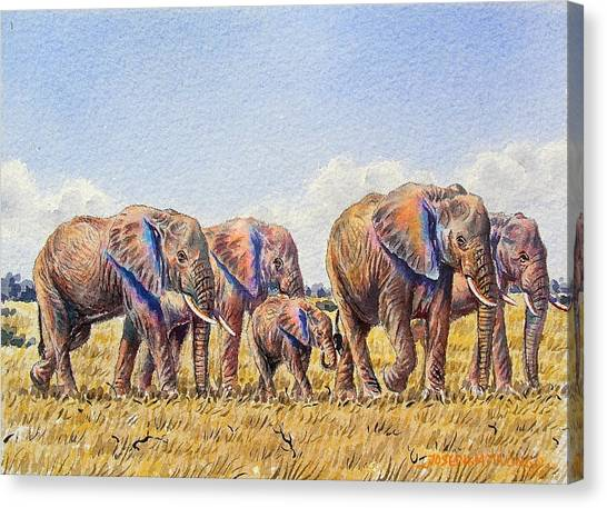Elephants Walking Canvas Print