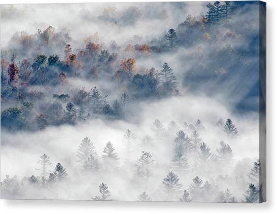 Pisgah National Forest Canvas Print - Elevated View Of Fog Filled Valley by Adam Jones