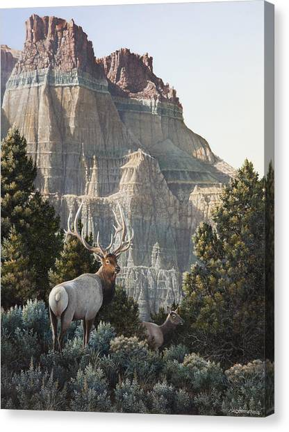 Cathedral Rock Canvas Print - Elk At Cathedral Rock by Mike Stinnett