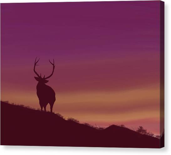 Elk At Dusk Canvas Print