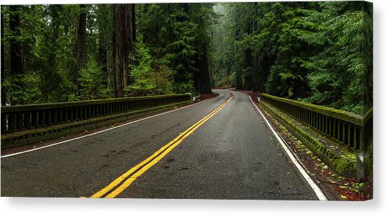 Redwood Forest Canvas Print - Elk Creek Bridge On Avenue by Panoramic Images