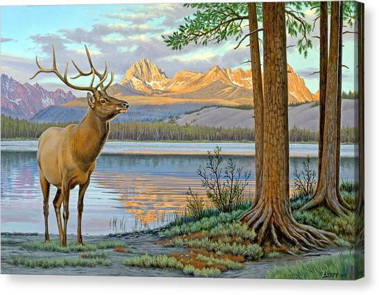 Idaho Canvas Print - Elk In The Sawtooths by Paul Krapf