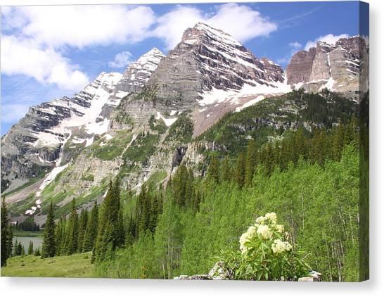 Elk Mountains Canvas Print