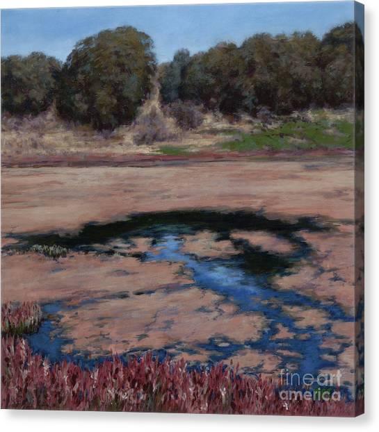 Elkhorn Slough Canvas Print by Betsee  Talavera