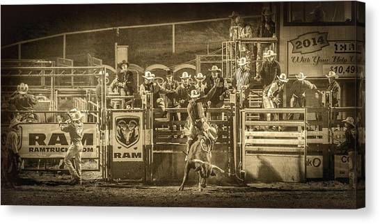 Bull Riding Canvas Print - Elks Rodeo - 2014 by Caitlyn  Grasso
