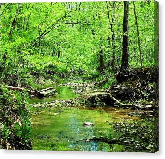 Canvas Print featuring the photograph Emerald Creek by Candice Trimble