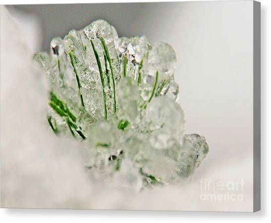 Emerald In Ice Canvas Print