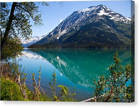 Emerald Reflections  Canvas Print by Chris Heitstuman