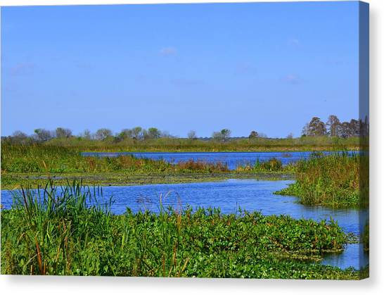 Emeralda Marsh IIi Canvas Print