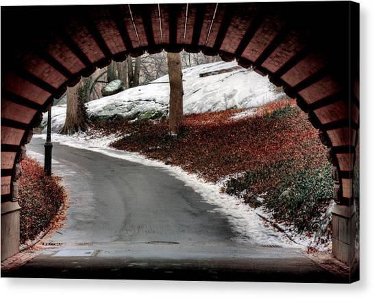 Emergence  Canvas Print by JC Findley