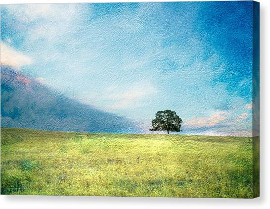Emerging Spring Canvas Print