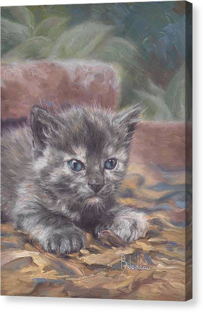 Kittens Canvas Print - Emily by Lucie Bilodeau