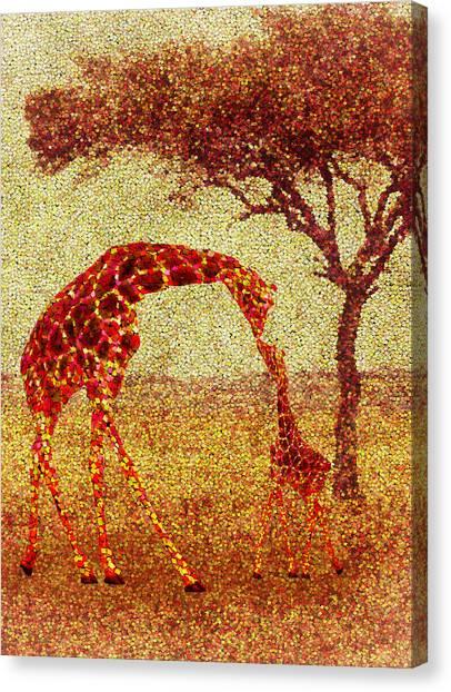 Survival Canvas Print - Emma's Giraffe by Jack Zulli
