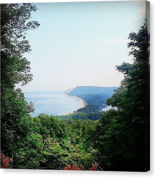 Forests Canvas Print - Empire Trail by Jill Tuinier