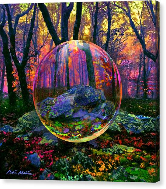 Robin Canvas Print - Enchanted Forest by Robin Moline