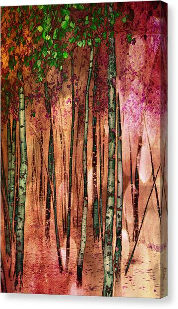 Enchanted Forest Canvas Print by Stephen Norris
