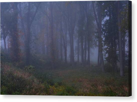 Enchanted Forest Two Canvas Print
