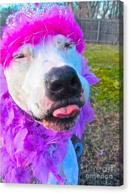 End Bsl Officer Do I Look Like I'm Into Dog Fighting? Canvas Print by Q's House of Art ArtandFinePhotography