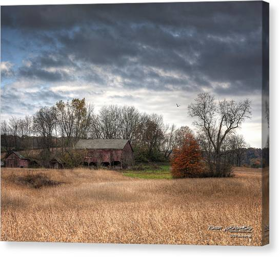 End Of Fall - Ohio IIi Canvas Print