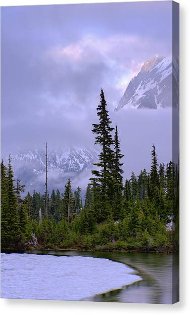Cloud Forests Canvas Print - Enduring Winter by Chad Dutson