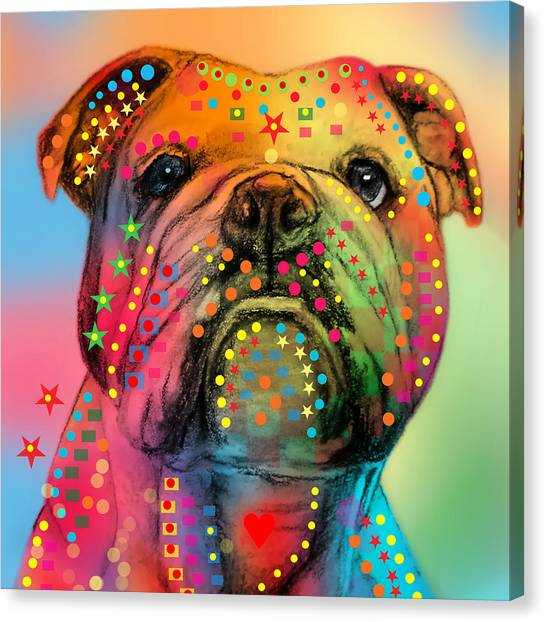 Pitbulls Canvas Print - English Bulldog by Mark Ashkenazi