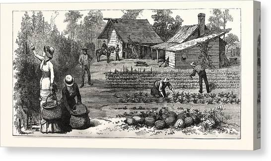 Garden Scene Canvas Print - English Garden. Scenes Rugby, The English Colony Tennessee by American School