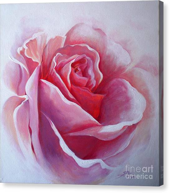 English Rose Canvas Print