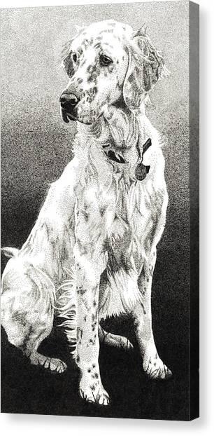 English Setter Canvas Print by Rob Christensen