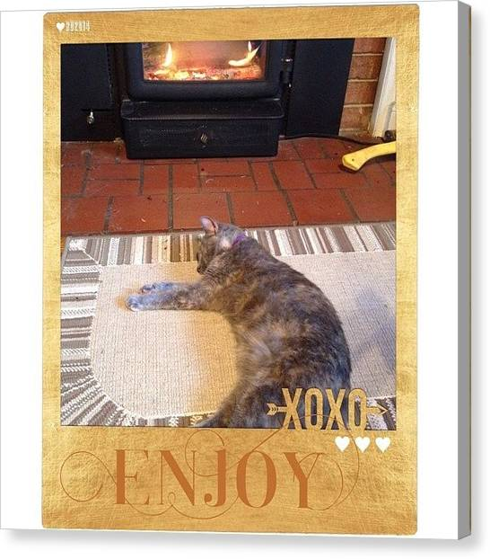 Kittens Canvas Print - #enjoy The #warmth My Little #princess by Teresa Mucha