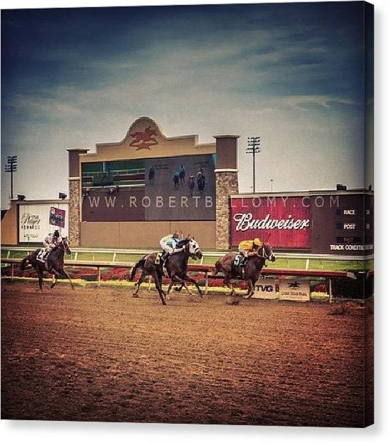 Race Horses Canvas Print - Enjoyed The #horseraces! #lonestarpark by Robert Bellomy